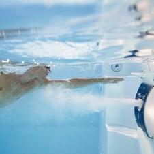 macchina-per-nuoto-contro-corrente.jpg