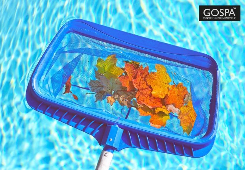 come-fare-manutenzione-piscina-ogni-stagione-COVER.jpg